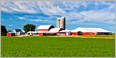 Agricultural - Farm Land