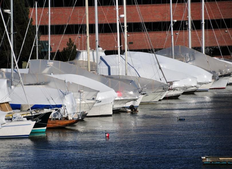 Boat_Covers_in_Marina.jpg